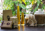Essential oil project launched in Hoi An