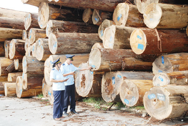 Vietnam warned of risks in importing timber from Africa