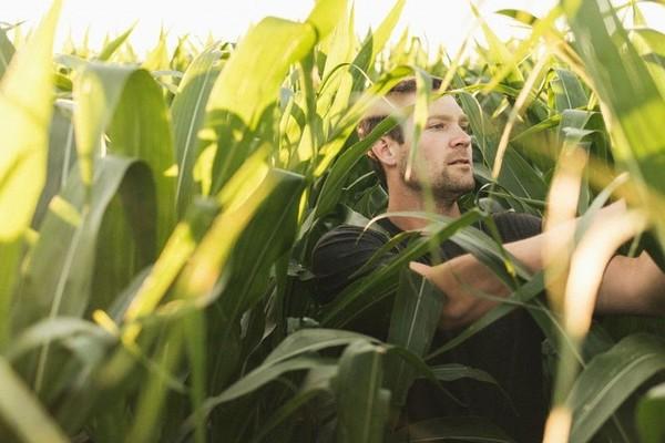 Trước Bà Tân Vlog, những nông dân này đã kiếm tiền tỷ dễ dàng nhờ làm video
