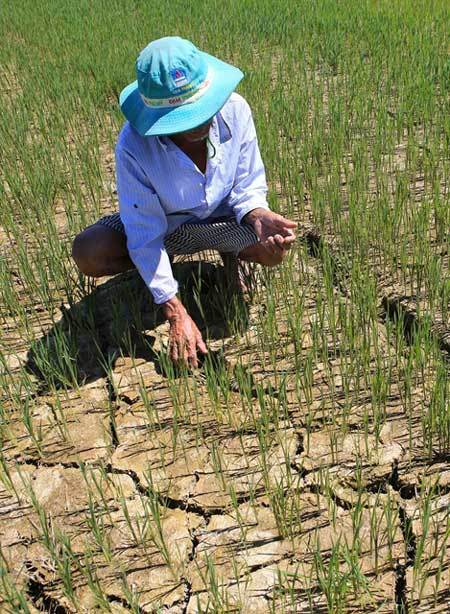 Central Vietnam grapples with extreme heat, drought