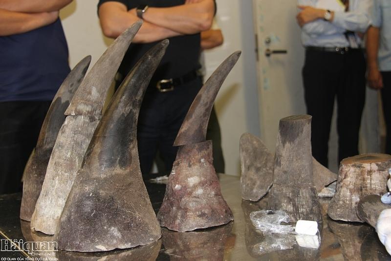 Sừng tê giác, xì gà 'cưỡi máy bay' về Việt Nam