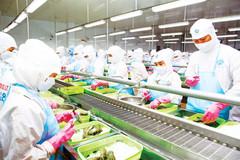 The dynamics of Vietnam's M&A market