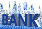 VN banks make big profits but share prices fall