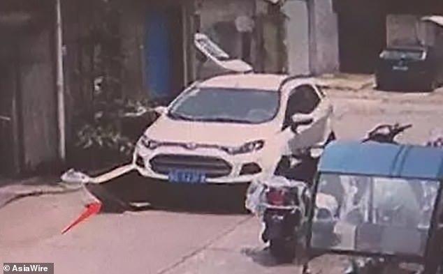 Trốn trong thùng carton giữa đường, bé 5 tuổi bị ô tô chèn qua
