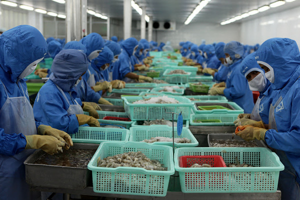 Gom 42 tỷ USD: Tắc Mỹ và EU, mở thêm đường qua Trung Quốc, ASEAN