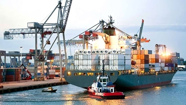 Vietnamese shipping fleet ranked 30th in the world