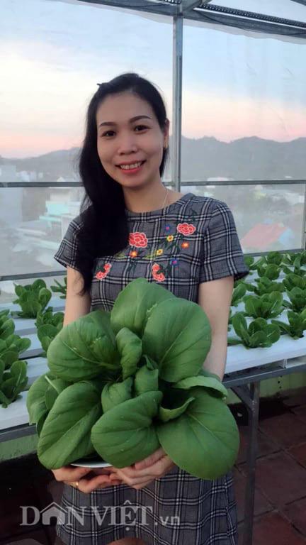 vườn rau thủy canh,trồng rau nhà phố,trồng rau trên sân thượng,nông dân phố