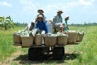To boost Vietnam's agro-exports to China