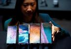 Doanh thu smartphone của Samsung đang sụt giảm mạnh