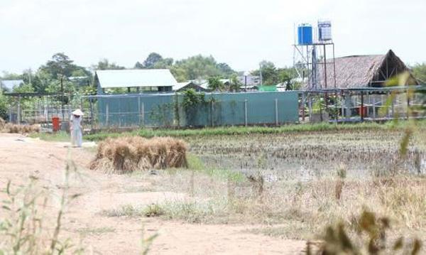 HCM City gets tough on illegal construction