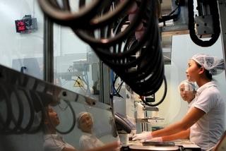 EVFTA boosts bilateral trade between Vietnam and EU member states