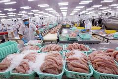 VN catfish exports: sales goals unmet despite price cut