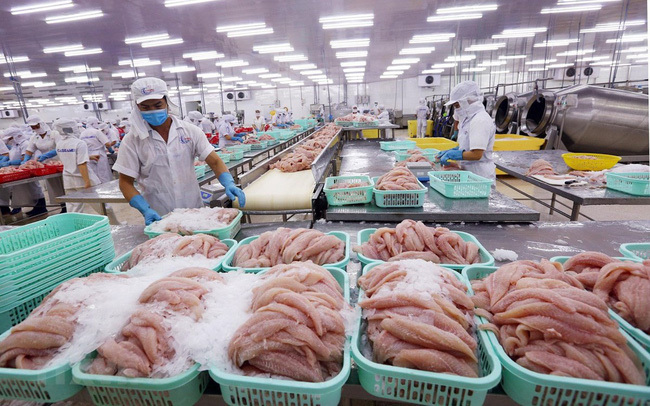 VN catfish exports: sales goals unmet despite price cut