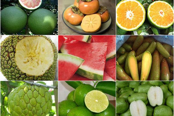 9 loại trái cây không hạt từng 'làm mưa làm gió' cho thu lời 'khủng'