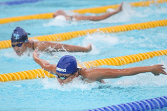 Swimmers, finswimmers to compete at national tournament