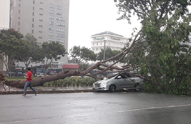 Thời Tiết,Bão Số 3,mưa giông,Sài Gòn