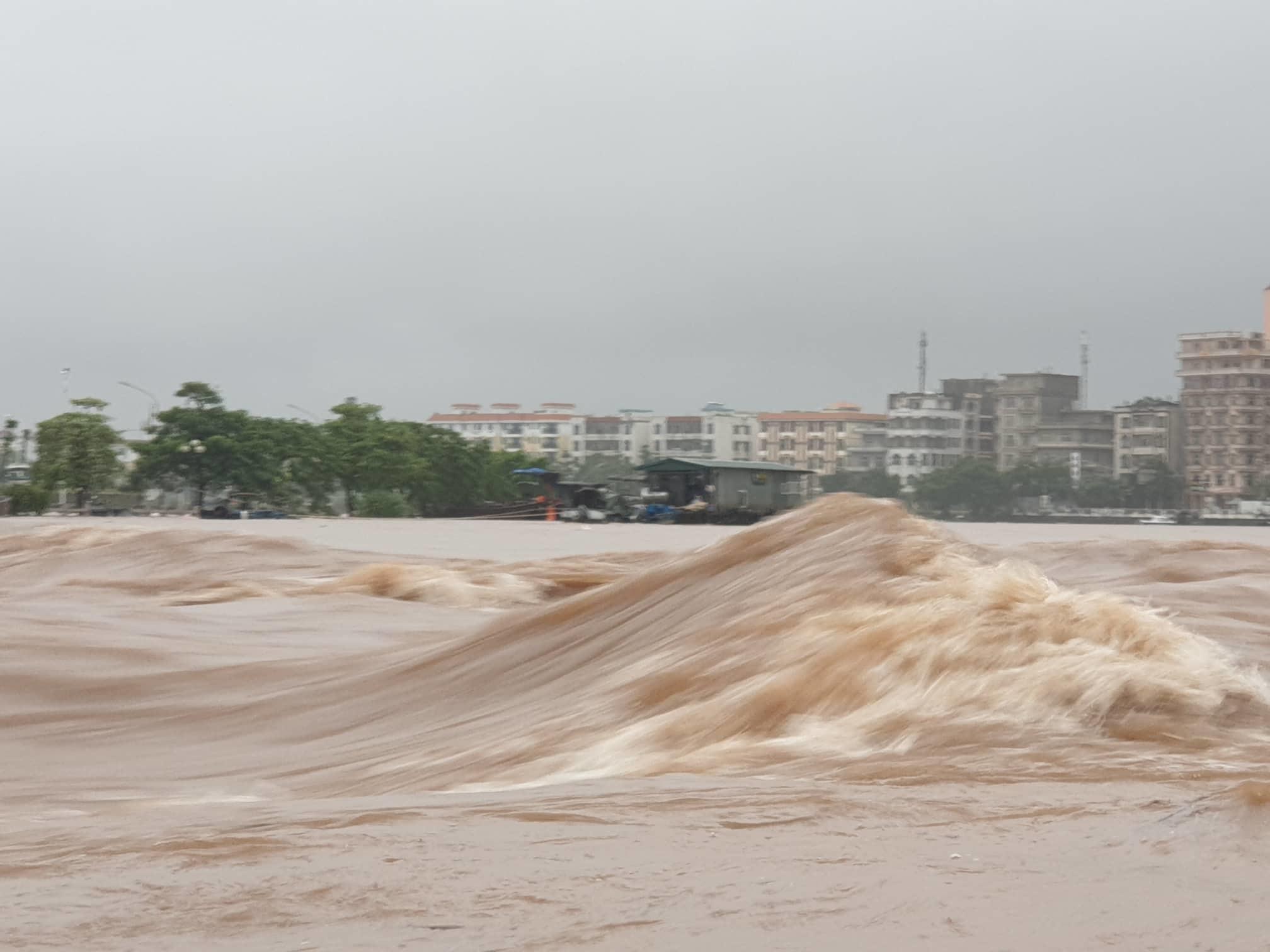 Sông Ka Long nước lũ dâng cao, Móng Cái cây đổ ngổn ngang