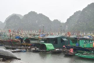 Đã liên lạc được với 21 tàu cá Quảng Bình tránh bão ở đảo Hải Nam