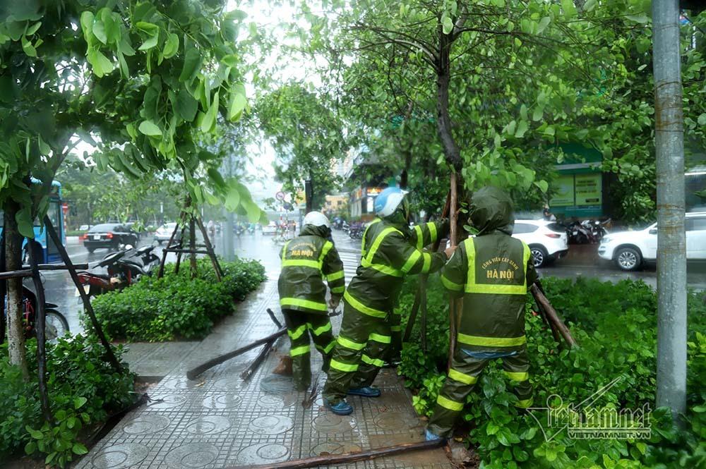 Hà Nội mưa tầm tã, gió phần phật, hàng chục cây xanh gãy đổ