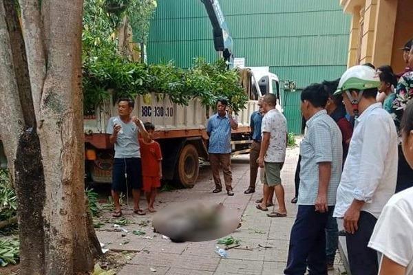 Ngườiđànông Hà Tĩnh tử vong khi cắt tỉa cây ở trụ sở UBND huyện