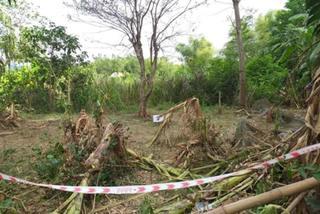 Sau tiếng nổ lớn trong vườn, người đàn ông ở Quảng Nam tử vong