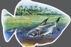 """Giới thiệu bộ Tem """"Cá sông Mê Kông"""