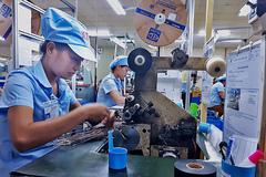 Mỗi lao động Việt làm ra 102 triệu/năm, bằng 1/30 Singapore
