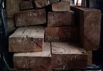 Tài xế chở gỗ lậu dàn dựng màn chạy trốn CSGT Quảng Nam bất thành