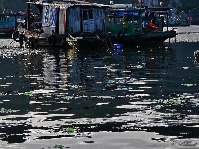 Rác nilon dập dềnh mặt biển, người Việt nhìn nhau đỏ mặt ở vịnh Hạ Long