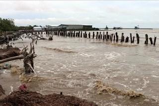 Kien Giang suffers from coastal erosion