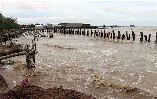 Vietnam's coastline urgently needs new resilience development strategy