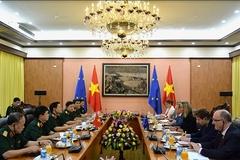 VN, EU to set up periodical defense-security consultation mechanism