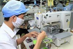 8 reasons behind gap in Vietnam's productivity level and regional peers