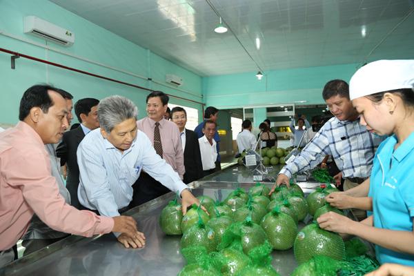 MM Mega Market Việt Nam đẩy mạnh tiêu thụ hàng Việt Nam