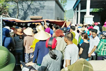 Three children drown in Quang Binh