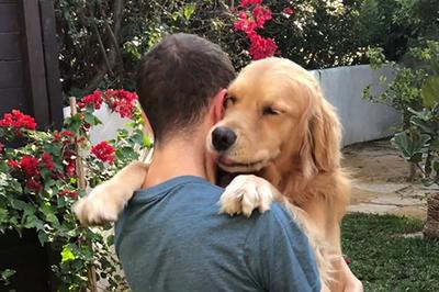 Những lợi ích về mặt sức khỏe khi nuôi chó