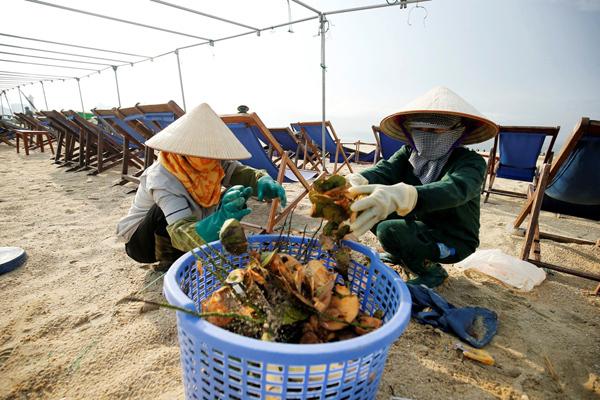 Ngành du lịch Hạ Long nói không với rác thải nhựa
