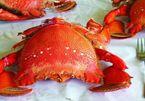 Những món ăn 'đắt xắt ra miếng' ở hòn đảo Lý Sơn