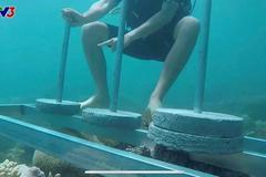 Cuộc đua kỳ thú bị chỉ trích vì phá hoại môi trường biển