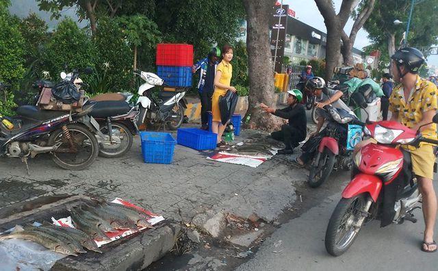 Người TP.HCM 'đổ xô' mua cá tầm 100 ngàn/kg ủng hộ dân vùng lũ