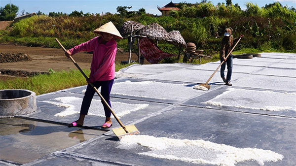 Salt workers struggle under the harsh sun