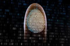 Google loại bỏ việc nhập mật khẩu web cho điện thoại Android