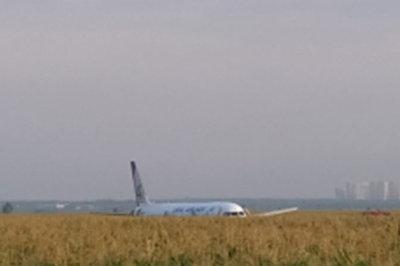 Đâm phải mòng biển, máy bay Nga chở 233 người đáp bằng bụng xuống cánh đồng