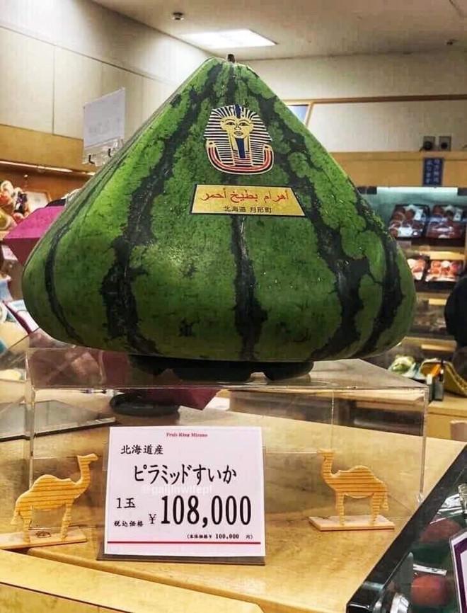 trái cây Nhật Bản,hoa quả độc lạ,dưa hấu,hoa quả nhập khẩu,trái cây nhập khẩu,hoa quả Nhật Bản