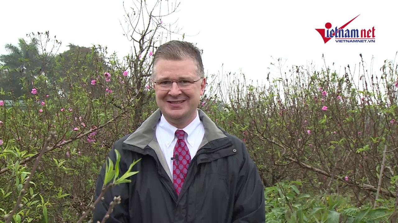 Bài 2: Đại sứ Mỹ ra vườn ghép đào, đọc thơ Nguyễn Trãi chúc Tết
