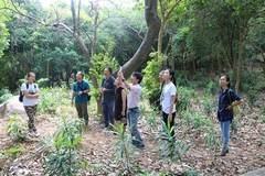 Forest school opens in Da Nang