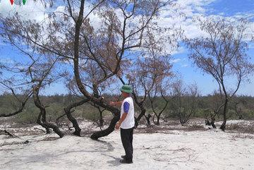 Quang Binh residents oppose titanium mining
