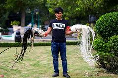 Gà lạ đuôi dài cả mét, giá trăm triệu ở Tây Ninh
