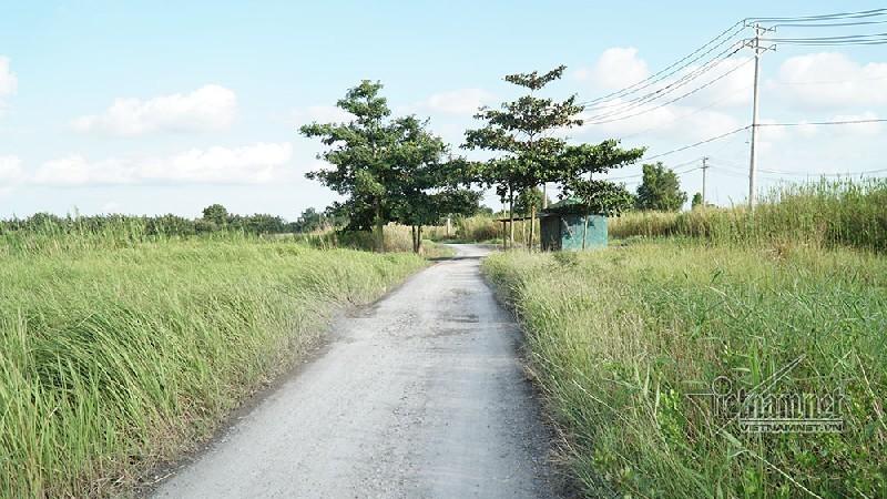 Dự án khu công nghiệp 'treo' gần 20 năm giờ vẫn hoang phế, cỏ mọc um tùm