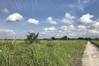 """Dự án khu công nghiệp """"treo"""" gần 20 năm giờ vẫn hoang phế, cỏ mọc um tùm"""
